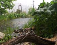 regen-steine-holz