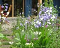 web-gartenweg-atelier20-06-13_8951