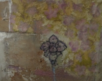 trockenblume-20x20cm-2011-collage