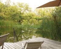 am-schwimmteich-zum-suennele-ausruhen-schwimmen-und-malen