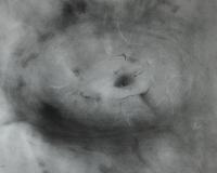 die-fischhaeutige-20-x-20-cm-1998